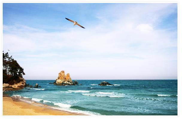 Beautiful East Sea, Korea Sea!